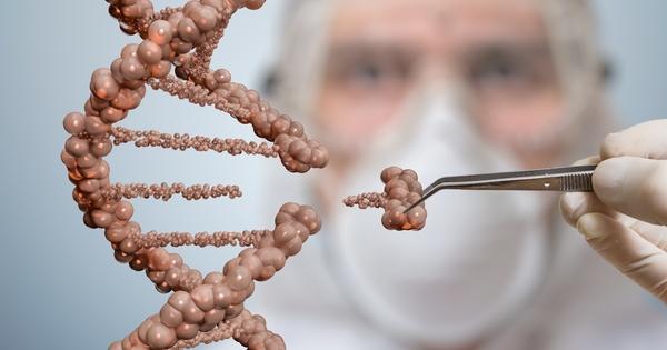Nouveaux OGM: la Commission européenne consulte sur un nouveau cadre juridique