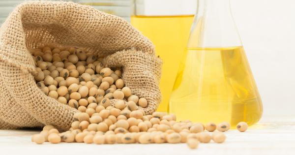 L'huile de soja sera formellement interdite dans les biocarburants