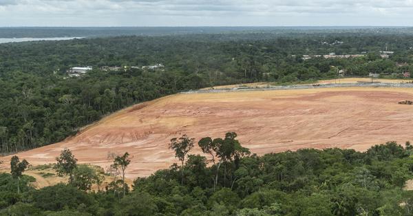 Amazonie: une ONG porte plainte contre Jair Bolsonaro pour crimes contre l'humanité