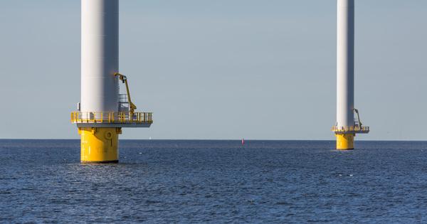 Les colonies d'organismes marins des éoliennes offshore permettent de stocker du carbone