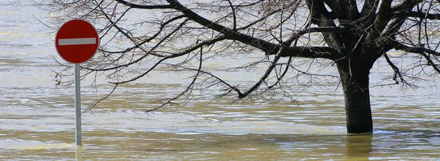 Vendée : les premiers plans de prévention des risques d'inondation post-Xynthia validés