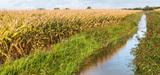 Nitrates : la très difficile révision des zones vulnérables et des programmes d'actions