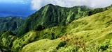 Le projet de loi sur la biodiversité entend faire reconnaître les savoirs traditionnels