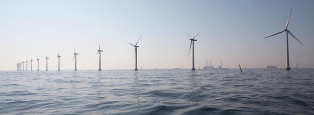 Eolien en mer : pas si simple de réaliser les études d'impact