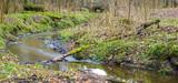 La Gemapi, un bouleversement conséquent pour la gestion de l'eau