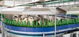 Industries agroalimentaires : quand on veut faire de l'efficacité énergétique, on peut