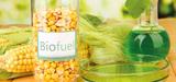 Biocarburants : les filières locales en danger