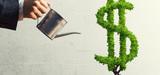 Investissements : la France se met au vert