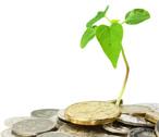 Quels financements pour le green business ?