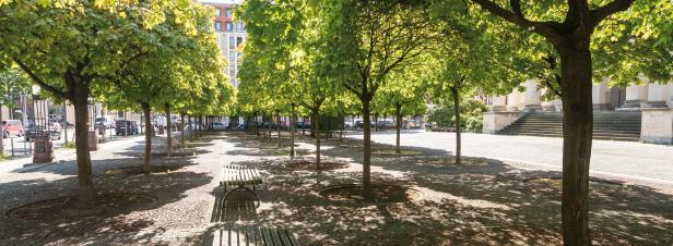 Intégrer l'adaptation à la planification urbaine