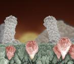 Nanomatériaux : entre défis et précaution, la science avance