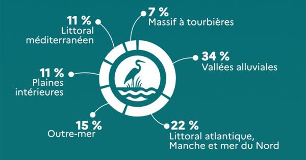 Zones humides: 41% des sites emblématiques se sont dégradés entre 2010 et 2020