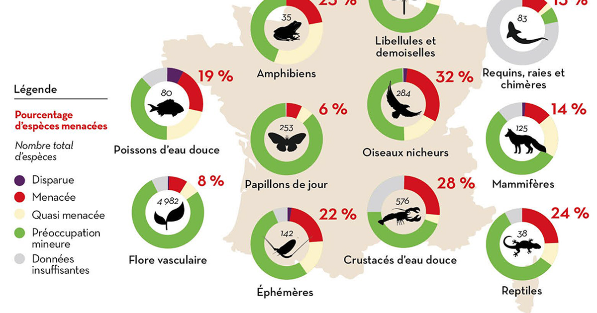 Liste rouge de l'UICN: plus de 2 000 espèces sont menacées en France