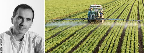 """""""Des pesticides restent autorisés alors qu'ils devraient, selon l'Anses, être interdits"""""""