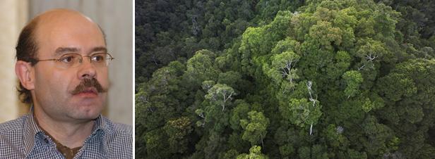 """Ebola : l'augmentation des perturbations environnementales a davantage exposé la population"""