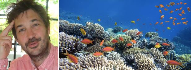 """""""Le droit de la mer n'est pas à la hauteur des enjeux actuels de la biodiversité marine"""""""