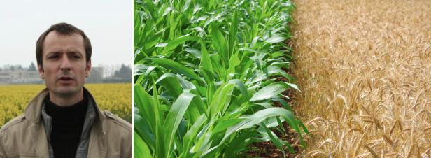 """""""Les exploitations agricoles de grandes cultures pourraient réduire leur usage de pesticides de 30%"""""""
