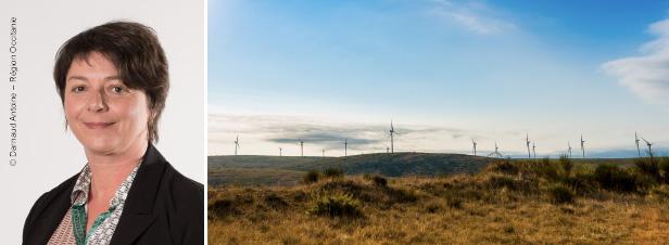 """""""Occitanie : la région à énergie positive ne doit pas rester un slogan politique"""""""