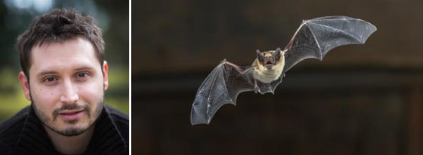 """""""De plus en plus d'acteurs intègrent la pollution lumineuse dans leur politique biodiversité"""""""