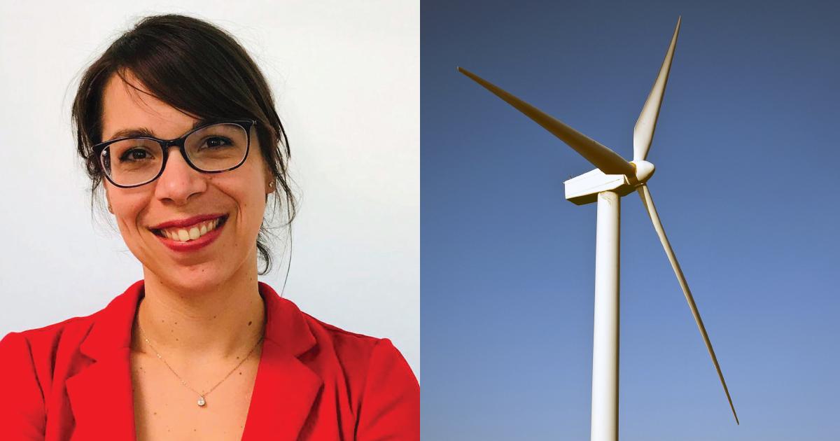 Éolien terrestre: les PPA, un outil incontournable dans la stratégie d'achat de l'entreprise METRO