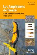 Amphibiens de France