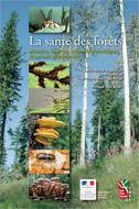 Santé des Forêts - Édition « de terrain »
