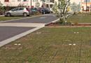 Parking perméable sur dalles alvéolaires : Système ECOVEGETAL MOUSSES