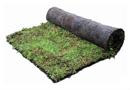 Sarnasedum : une étanchéité végétalisée extensive immédiate grâce à la mise ne place de tapis pré-cultivés