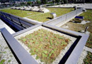 Sarnavert : une toiture comparable à un jardin naturel par Sika Sarnafil