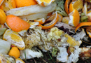 Réduire vos déchets organiques par traitement biologique