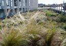 Graviland-Expert : la végétalisation semi-intensive de toit-terrasse adaptée à chaque région