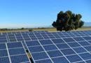Construction, exploitation et maintenance de parcs solaires
