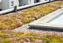 Sopranature®, solutions pour toitures végétalisées