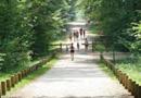 Sentiers : le plein d'idées pour développer vos territoires par Office National des Forêts (ONF)