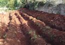 Solution IRRIGO pour réutiliser les eaux usées traitées en sols imperméables par STOC ENVIRONNEMENT