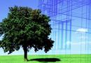 Immobilier : créer de la valeur grâce à la performance environnementale par GROUPE QUALICONSULT