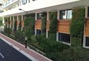 Mur végétalisé d'extérieur : réussir vos projets avec Modulogreen® par SARL Modulogreen France
