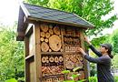 Biodiversité : valorisez votre image en menant un projet dédié par BeeOdiversity