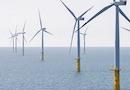 Éolien en mer : bénéficiez du savoir-faire reconnu d'un acteur de terrain par wpd
