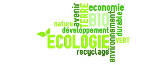 Loi Grenelle 2 : 50 décrets jugés ''prioritaires'' par le Ministère du Développement durable