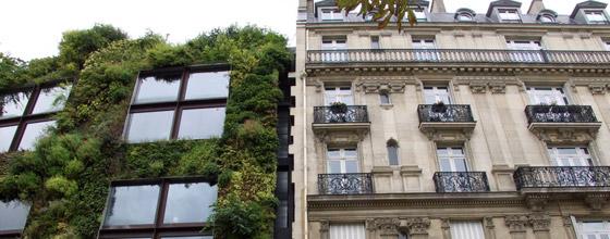 Droit De L Immobilier Un Droit Emergent Dans Le Sillage Du Grenelle