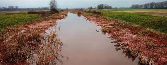 Nettoyage des boues rouges en Hongrie : beaucoup reste à faire
