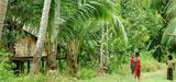 Forêts : replacer les activités humaines au cœur de la préservation