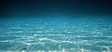 Biodiversité : vers un cadre juridique pour la protection des eaux internationales ?