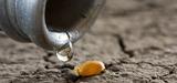 Économies d'eau : ce que propose le plan d'adaptation au changement climatique