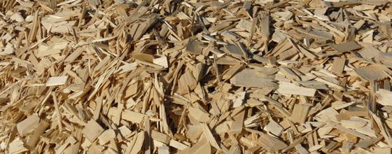 La difficile détermination du juste prix du boisénergie # Bois Negoce Energie