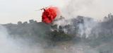 Changement climatique : le risque incendie doit être mieux anticipé