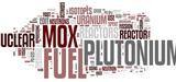 Nucléaire : l'Autorité environnementale s'interroge sur la filière Mox développée par EDF