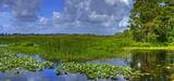 Natura 2000 : un nouveau régime d'autorisation est défini