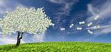 Les dépenses fiscales en faveur de l'environnement seraient économiquement peu efficientes